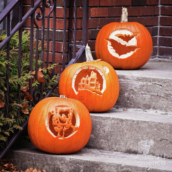 Carved Pumpkins Art Print featuring the photograph Carved Pumpkins For Autumn Holidays by Tatiana Travelways