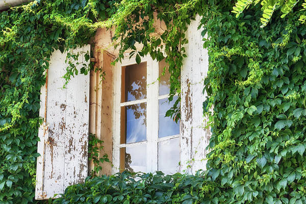 French Window Art Print featuring the photograph French window in Provence by Tatiana Travelways