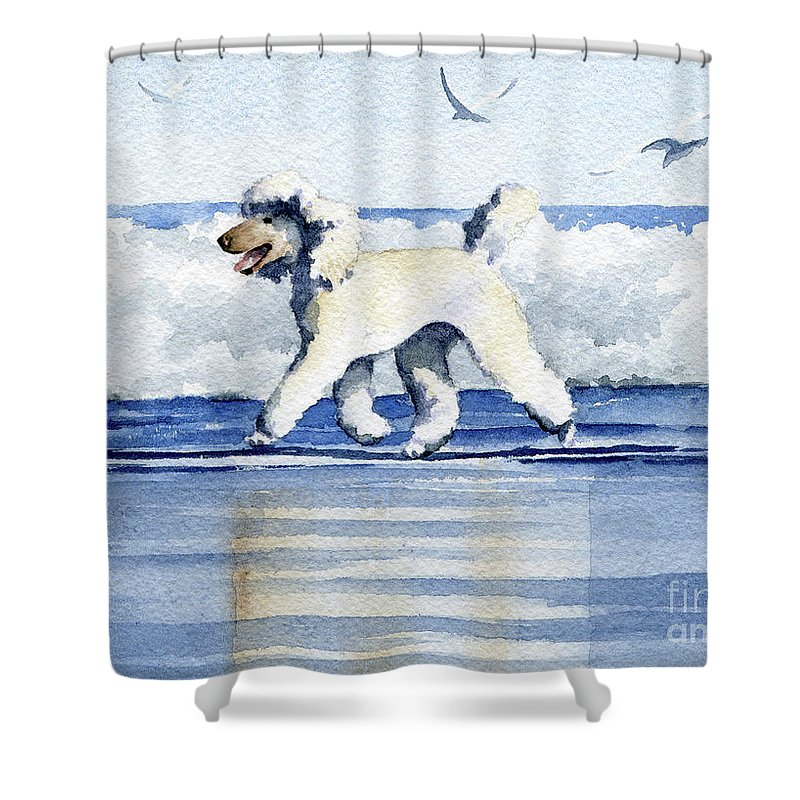 poodle at the beach shower curtain