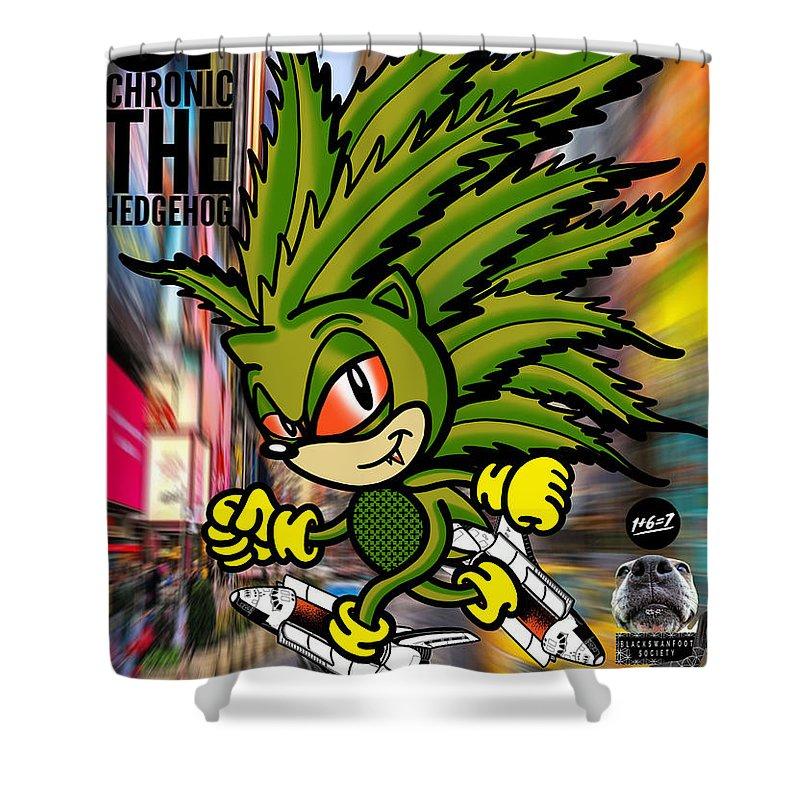 chronic the hedgehog shower curtain