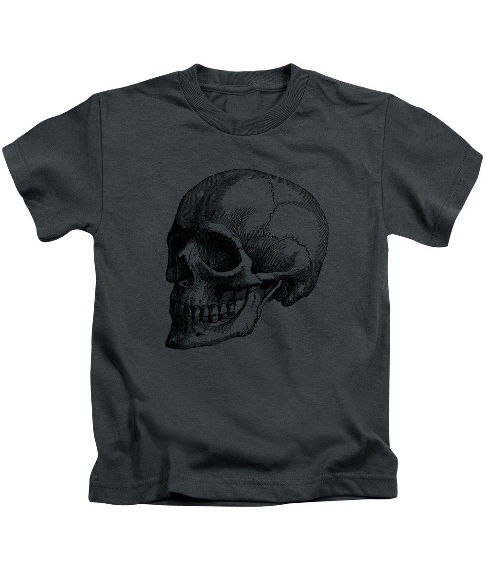 medium resolution of human skull vintage anatomy poster kids t shirt for sale by vintage anatomy prints