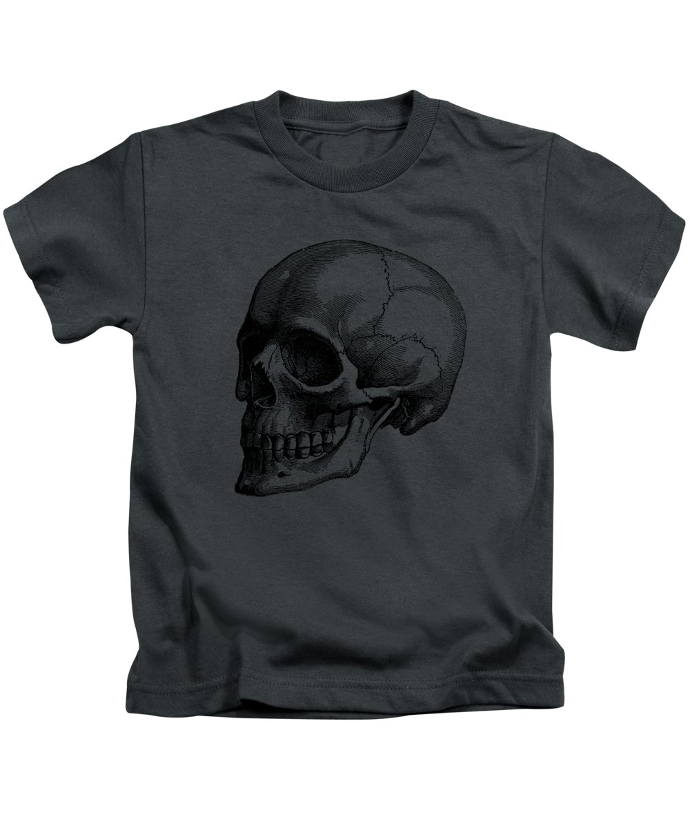 small resolution of human skull vintage anatomy poster kids t shirt for sale by vintage anatomy prints