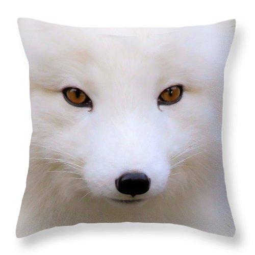 eyes of a white fox throw pillow