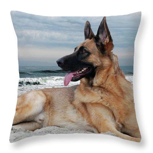 king of the beach german shepherd dog throw pillow