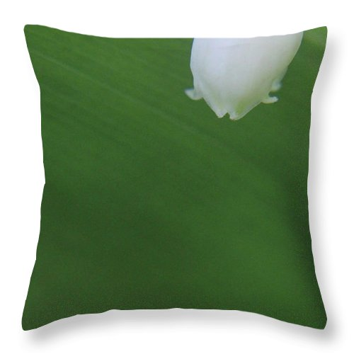 Nature Throw Pillow featuring the photograph A Little Bit Of White by Holly Morris