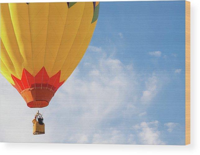 Hot Air Balloon Wood Print by Steven Green