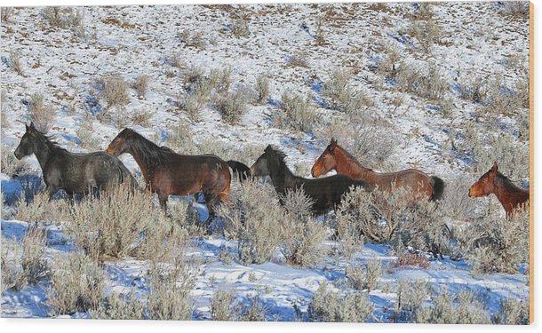 Mustangs From Lockwood Nevada Wood Print featuring the photograph 41. Lockwood Mustangs by Maria Jansson