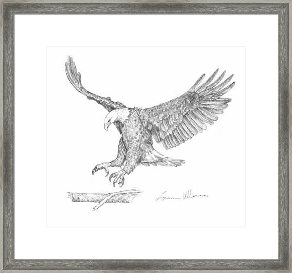 Eagle Landing Drawing by Loren Ullom