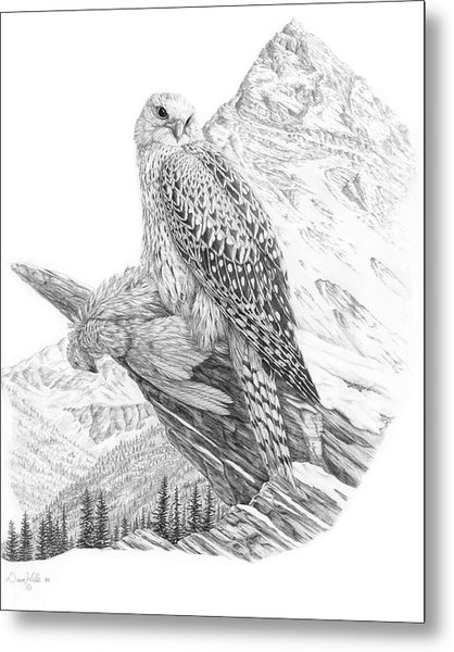 Arctic Gyrfalcon Painting by Dave Hills