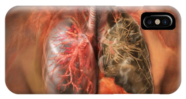 healthy lung vs smokers