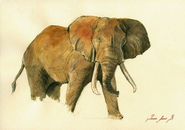elephant painting by juan