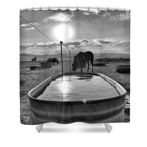 The Evening Meal Shower Curtain by Maria Jansson