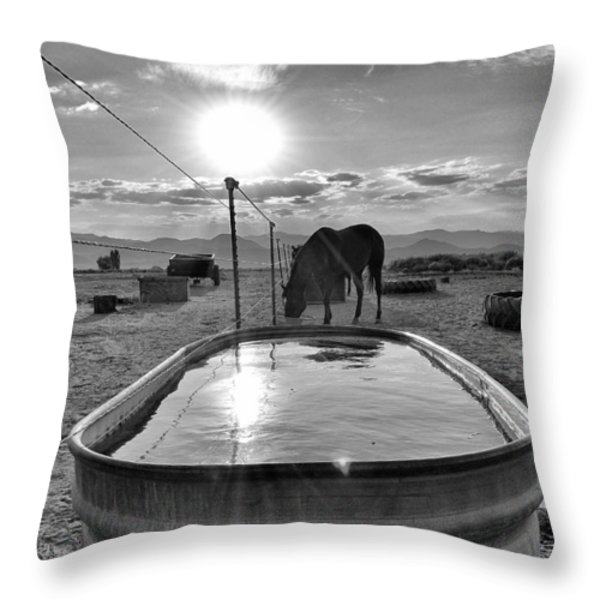The Evening Meal Throw Pillow by Maria Jansson