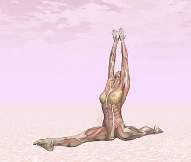 Naked Yoga Digital Art
