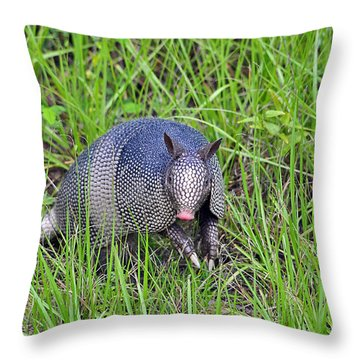 Armadillo Throw Pillows  Fine Art America