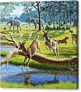 pleistocene animals artwork canvas