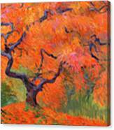 Japanese Maple Tree Painting by Judith Barath