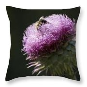 Bee On Thistle Throw Pillow