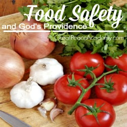 Food Safety and God's Providence Which is Safer, Plastic or Wood?   Great Peace Academy