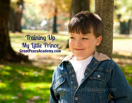 Training Up my Little Prince   Great Peace Academy