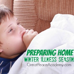 Preparing the home for winter illness season.