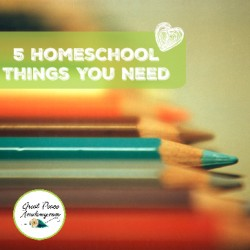 5 Homeschool Things You Need | GreatPeaceAcademy.com
