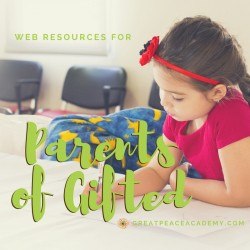Web Resources for Parents of Gifted   GreatPeaceAcademy.com #ihsnet #homeschool #gtchat   Find support, groups, blogs, books & more.