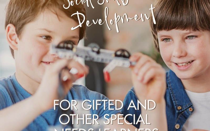 LEGO Therapy for the Development of Social Skills in Gifted Children | Renée at Great Peace #gifted #gtchat #homeschool #ihsnet