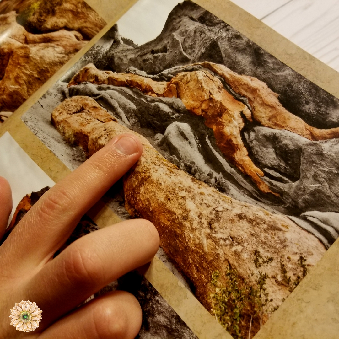 New Resource for Teaching Apologetics in Your Homeschool | Renée at Great Peace #homeschool #apologetics #fossils #science #ihsnet