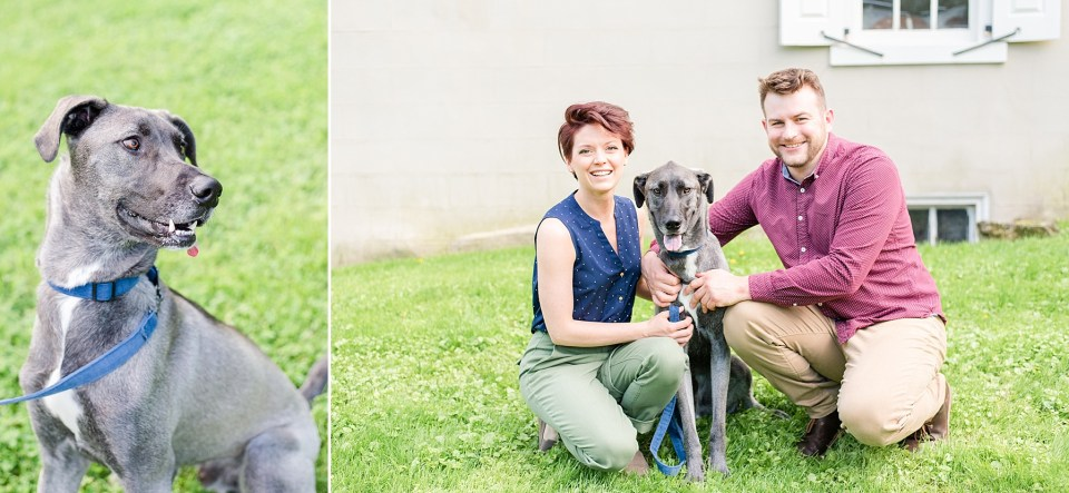 Spring engagement session with dog by Renee Nicolo Photography