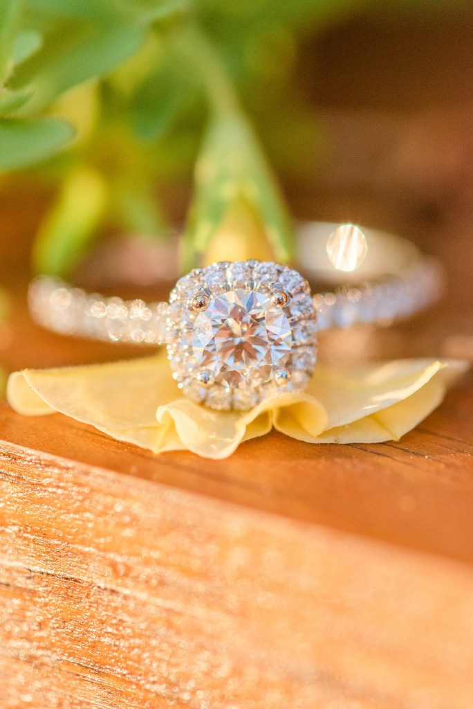 stunning diamond engagement ring with Renee Nicolo Photography