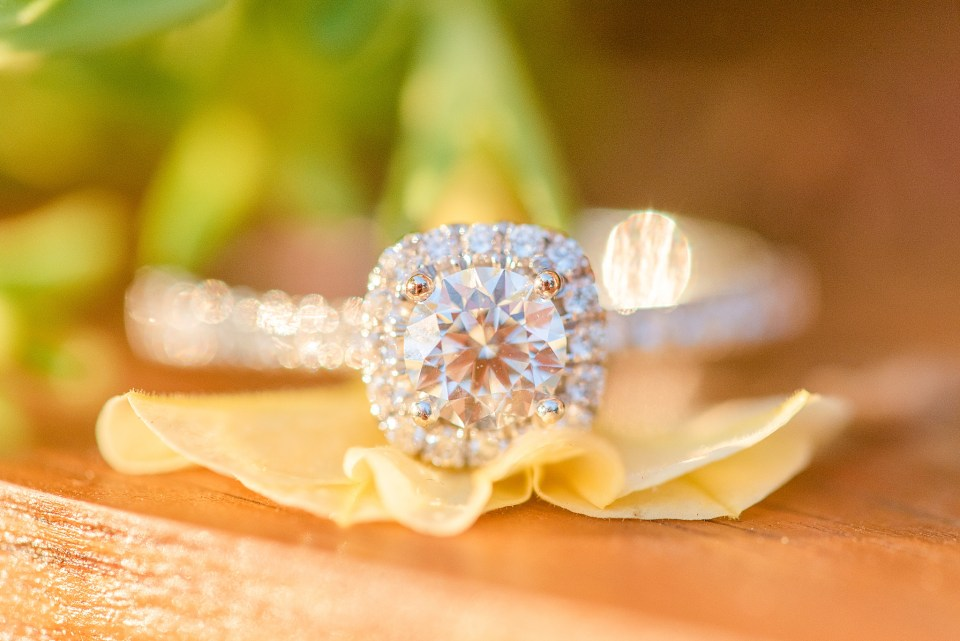 engagement ring photographed by PA wedding photographer Renee Nicolo Photography