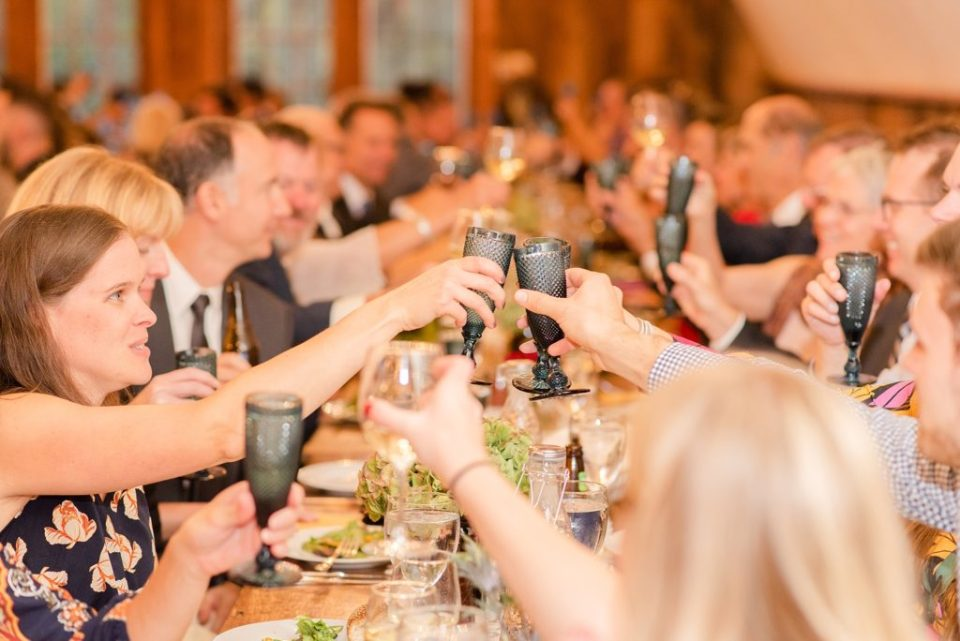 wedding toasts at reception photographed by Renee Nicolo Photography