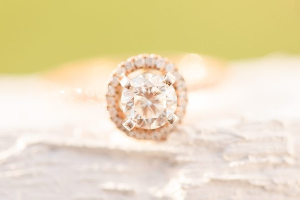engagement ring photographed by Renee Nicolo Photography