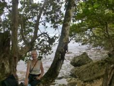 Bocas coast
