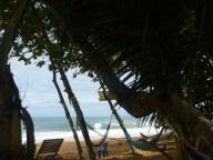 Bluff Beach surfers - and hammocks