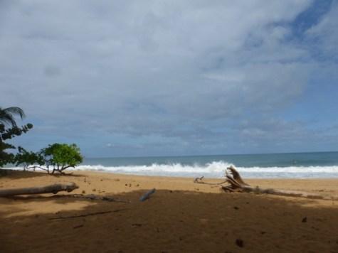 Beautiful water colors - near Bocas Del Toro