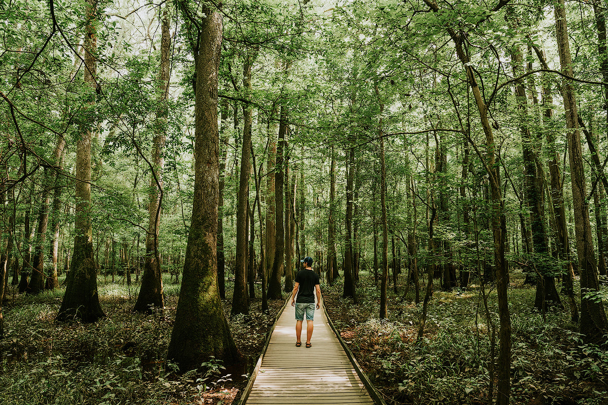 AMERICA'S NATIONAL PARKS – ALL 59 RANKED BEST TO WORST - CONGAREE NATIONAL PARK