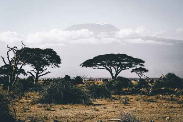 Visiting Africa: Malawi and More