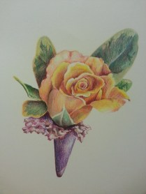 Colored Pencil Flower