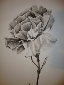 Charcoal flower