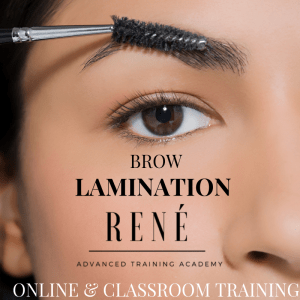 brow lamination training course