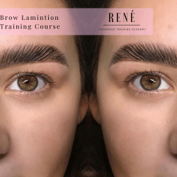 Online Brow Lamination Training Course