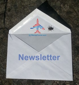 renes points newsletter logo