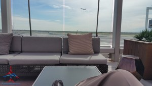 my view from the JFK Sky Deck RenesPoints blog