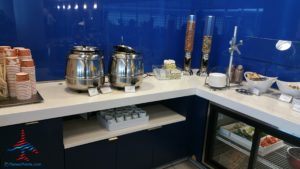Delta Minneapolis MSP Central concourse Sky Club Review RenesPoints travel blog (13)