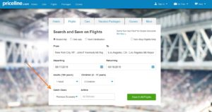 priceline home page flight search