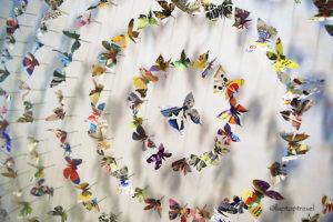 dsc_8898_asanda-spa-butterfly-art-display-seattle-delta-skyclub-seatac-laptoptravel_