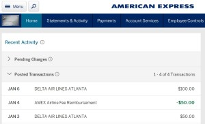 what-can-you-get-credit-for-from-delta-as-travel-egift-card-non-delta-platinum-card-renespoints