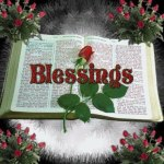 Blessings Bible